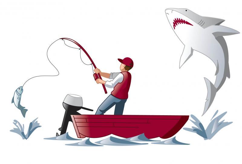 SharkHelpingFish