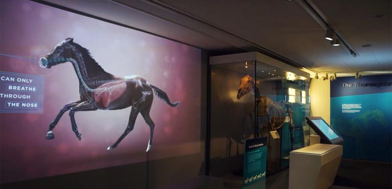 National Horse Racing Museum Animation