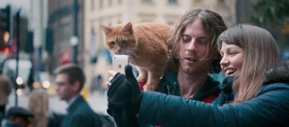 Street Cat Named Bob Still