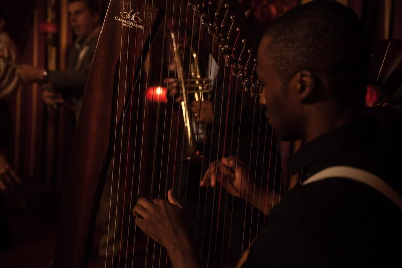 Playing the Harp in Pianist In a Brothel