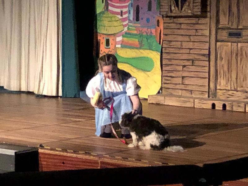 Dorothy - Wizard of Oz