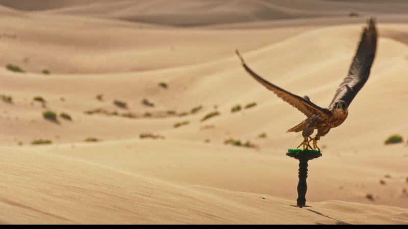 Screengrab | Filming in the Desert - Abu Dhabi