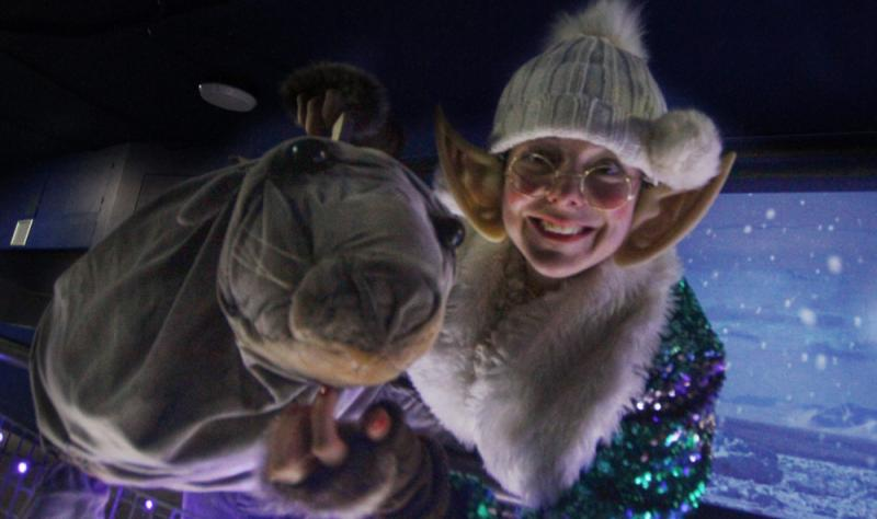 Journey to the North Pole with Puppet
