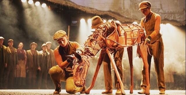 War Horse, Baby Joey