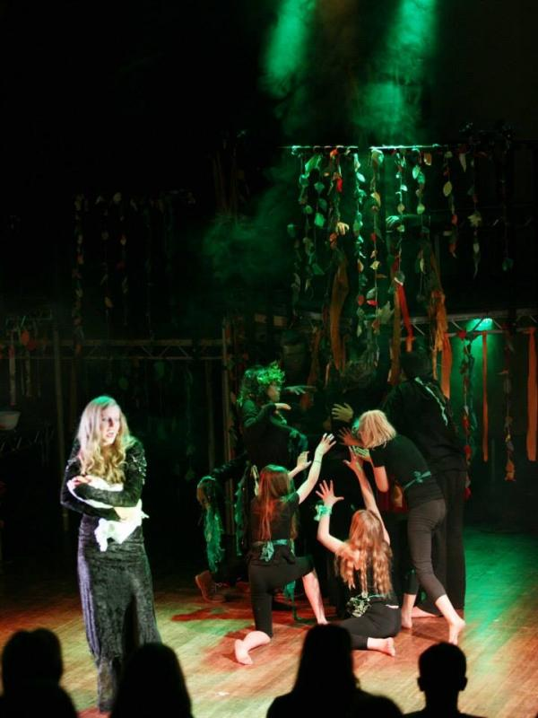 Into The Woods, Lights Music Action, West Suffolk Performing Arts Centre- April 2015