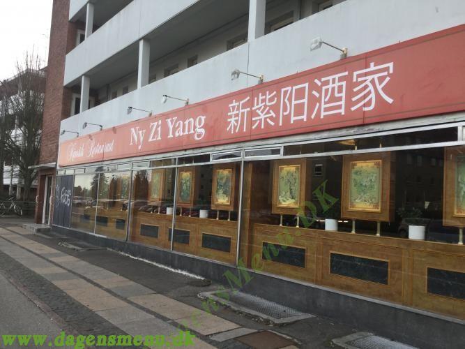 Ny Zi Yang Kinesisk Restaurant
