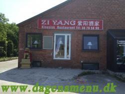 Zi Yang Kinesisk Restaurant