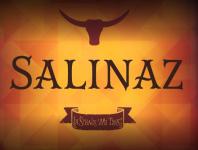 Salinaz Odense