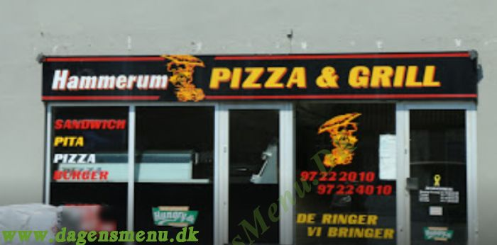 Hammerum Pizza & Grill