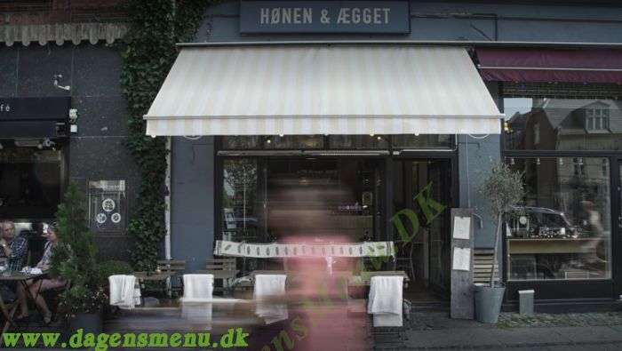 Honen & Aegget