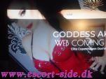 escort massage - DOMME \  BDSMFETISHQUEEN G. A. billede