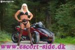 escort massage -   TsBina AMAGER ØRESUND billede