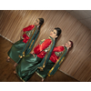 Audition to join a ladies dance group (bollywood/bhangra/giddha)
