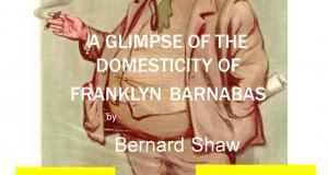 A Glimpse Of The Domesticity Of Franklyn Barnabas