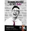 Dumbledore Is So Gay