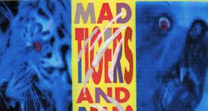 Mad Tigers And Bears