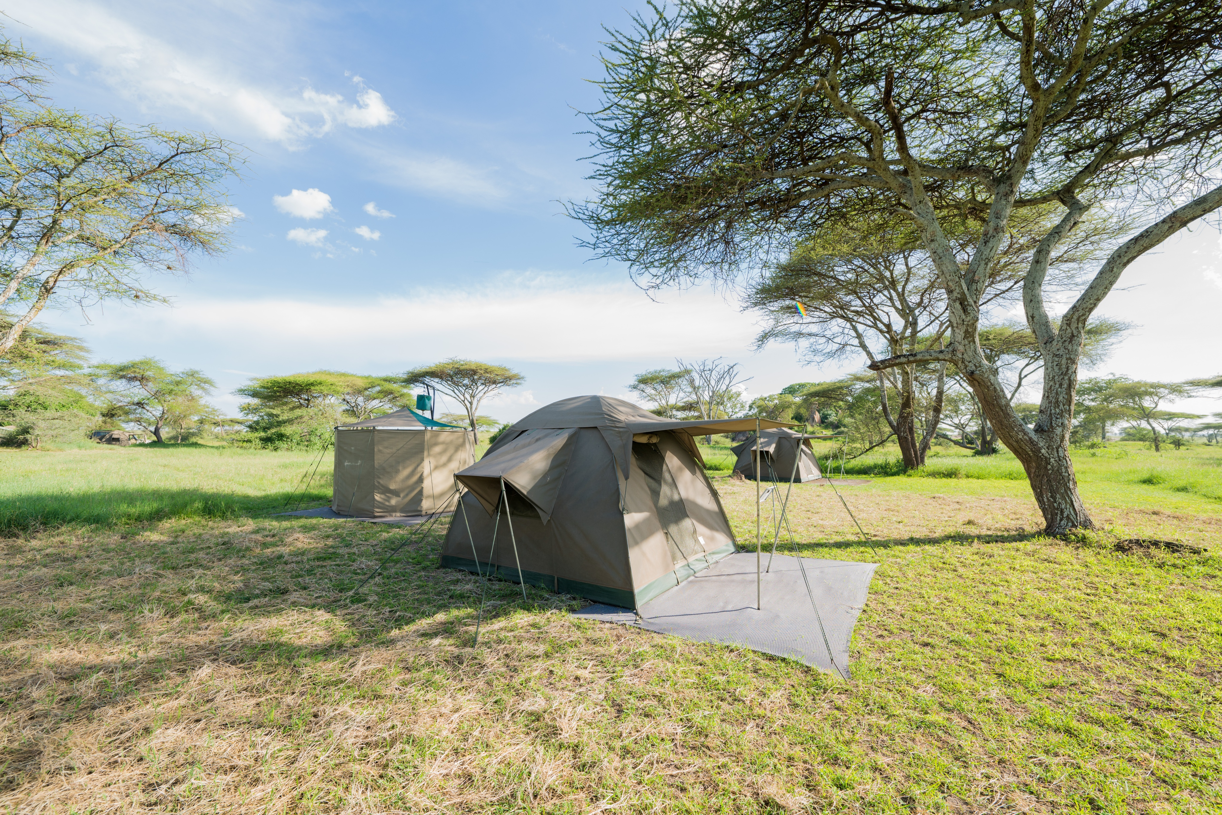 WAYO-Walking-Safari-Camp-tents.jpg#asset:116597