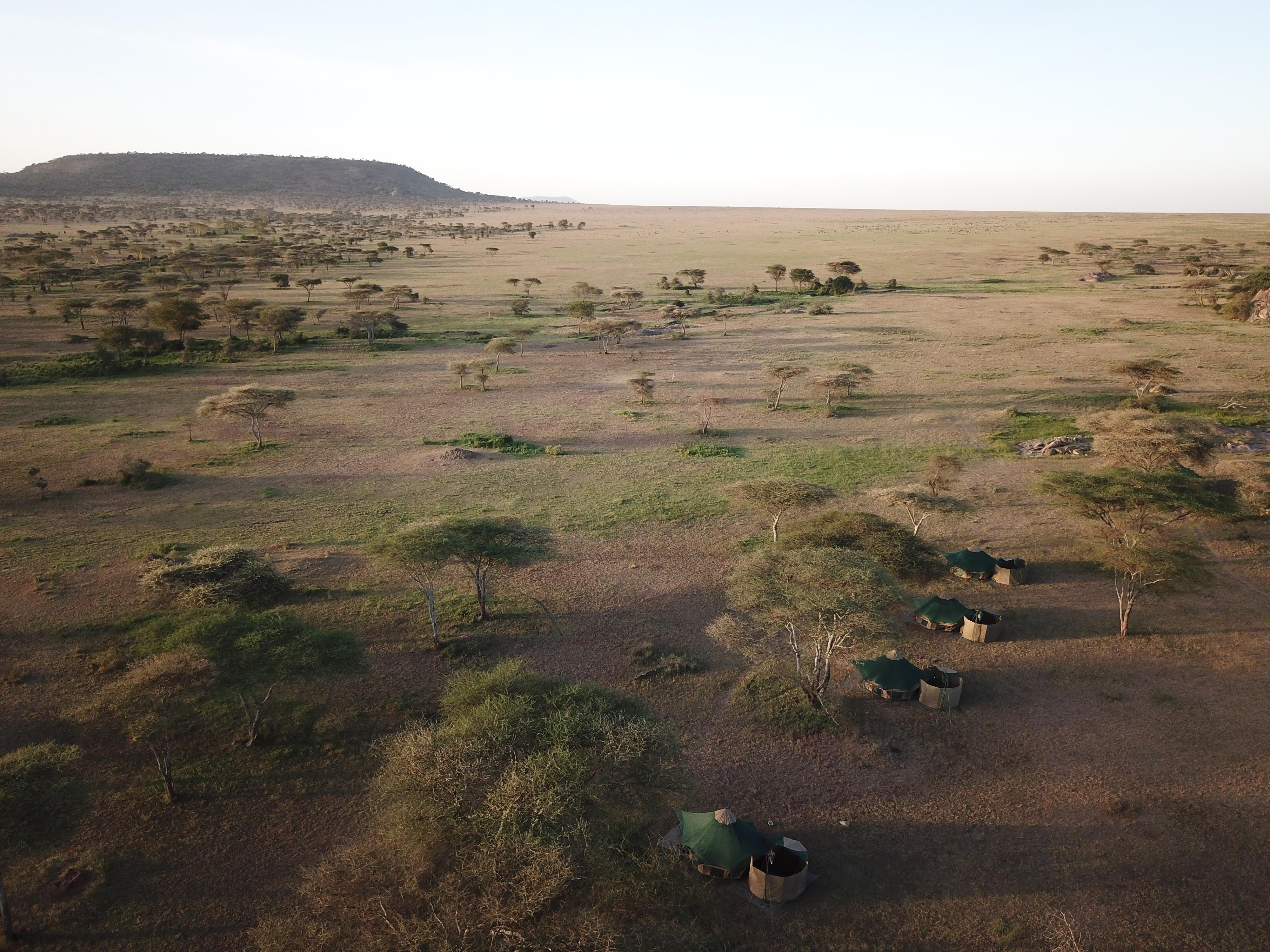 WAYO-walking-safari-camp-from-above.JPG#asset:116598