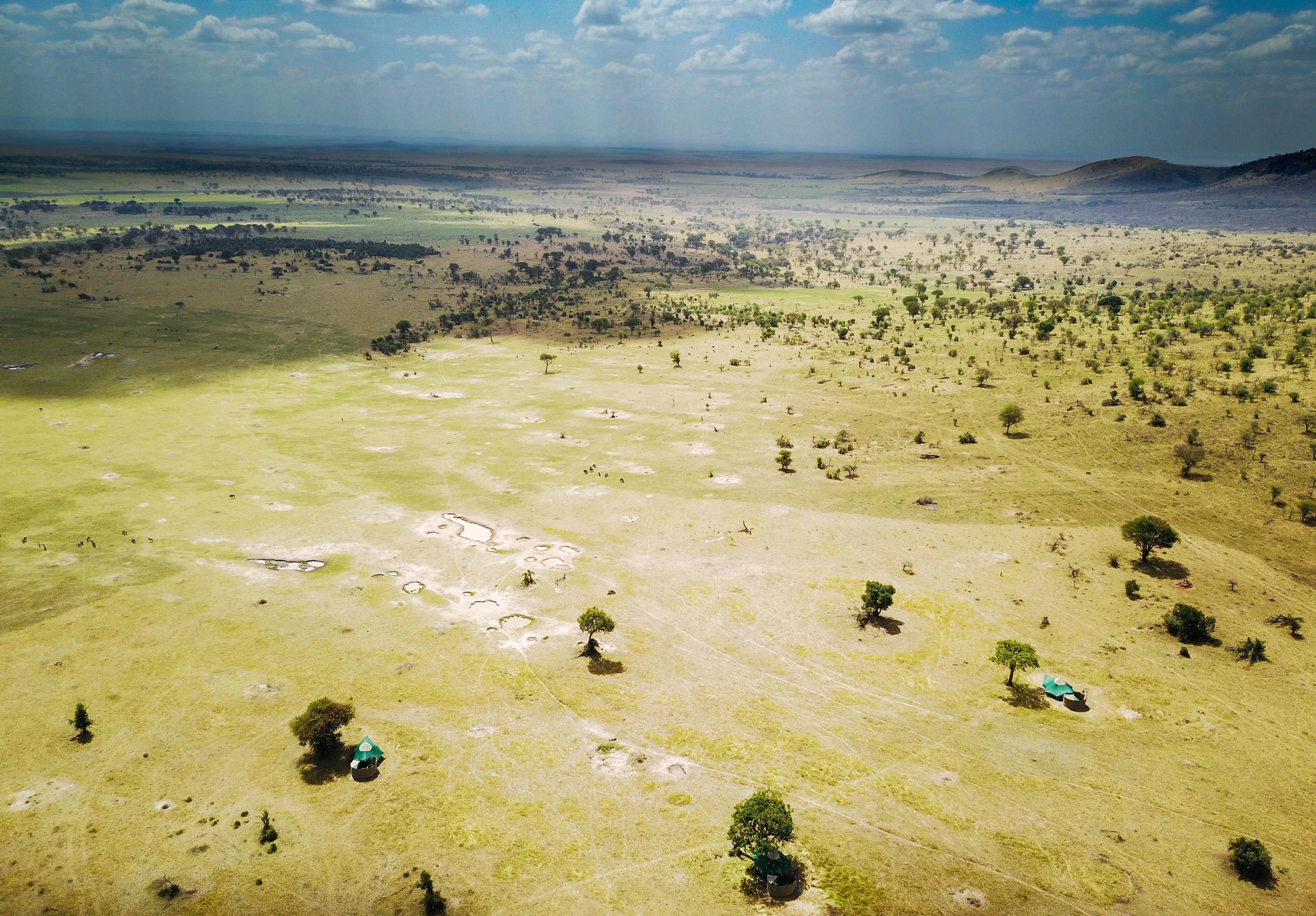 Wayo-Serengeti-Kogatende-Green-Camp.jpg#asset:116556