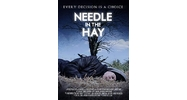 Needle in the Hay