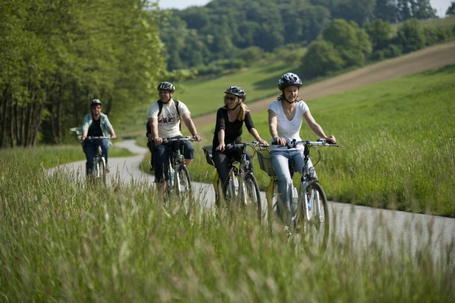 E-Bike-Verleih: Heurigen-Stadl - Pinkafeld - 3