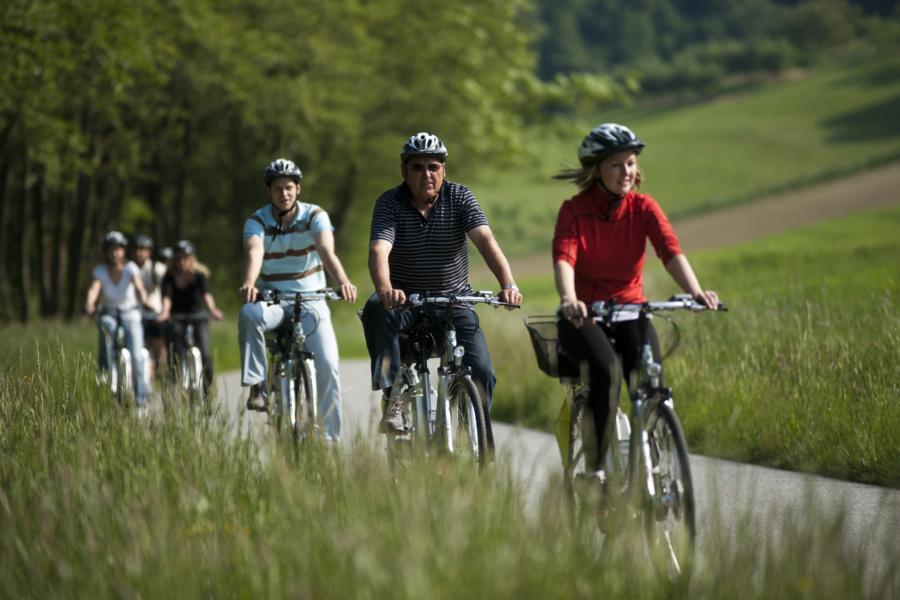 E-Bike-Verleih: Minihof Liebau - Minihof Liebau