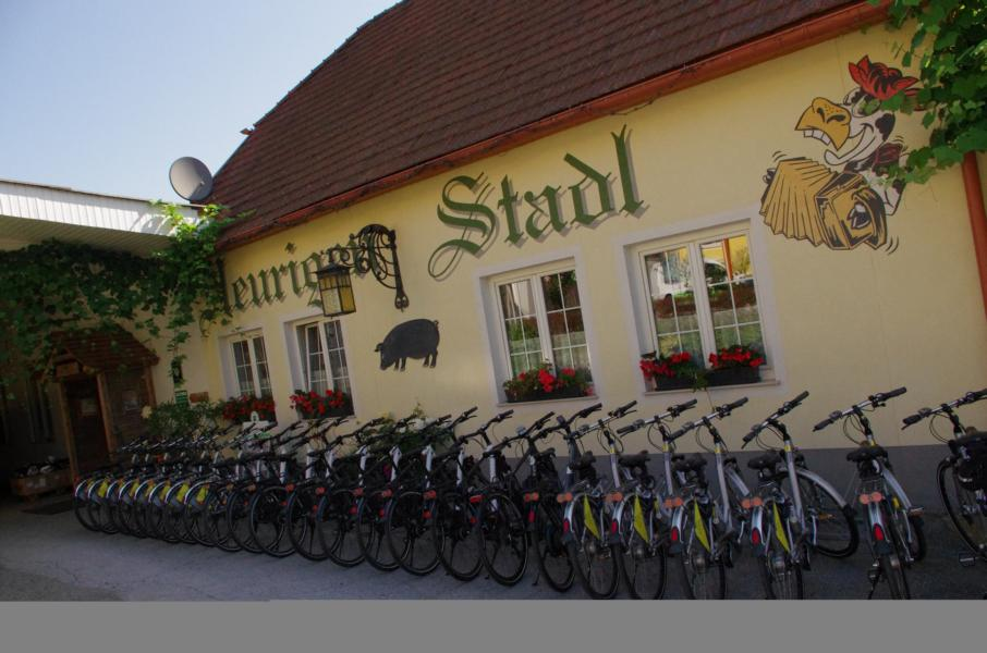 E-Bike-Verleih: Heurigen-Stadl - Pinkafeld