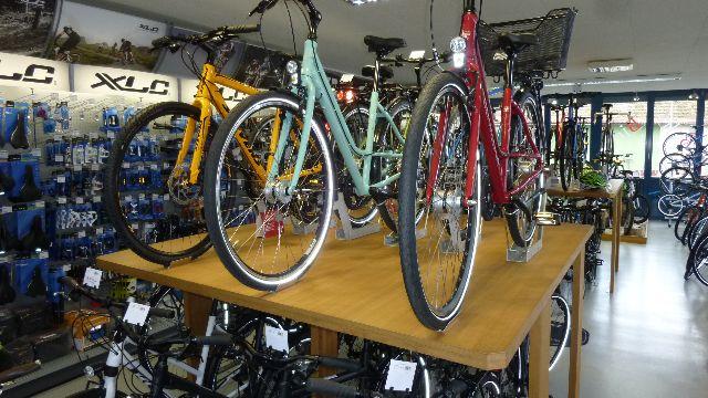 Bella Bici E-Bike und Fahrradverleih - Wachenheim - 4