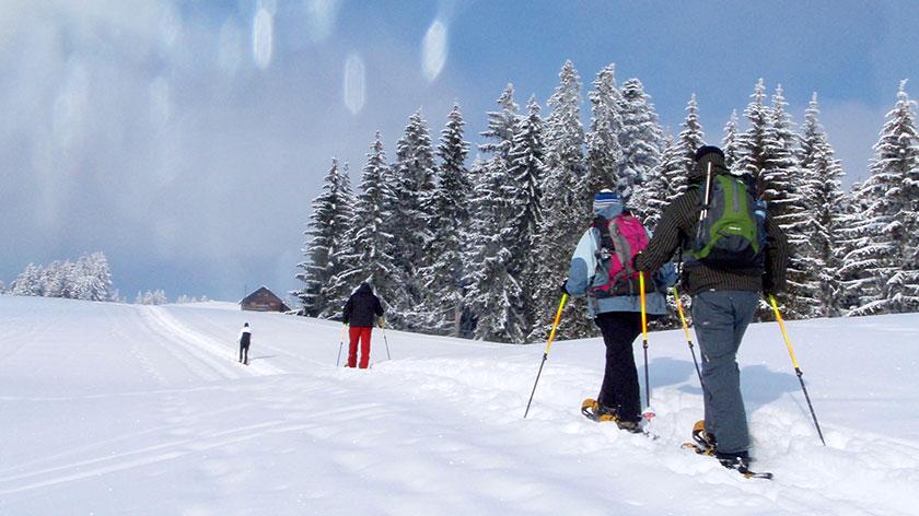 Schneeschuhtour Bad Tölz - München - 2