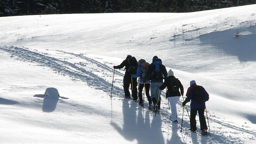 Schneeschuhtour Chiemsee - München - 1