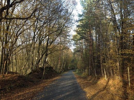 Mit dem E-Bike - Auf den Spuren des Uhudlers - Eltendorf - 4