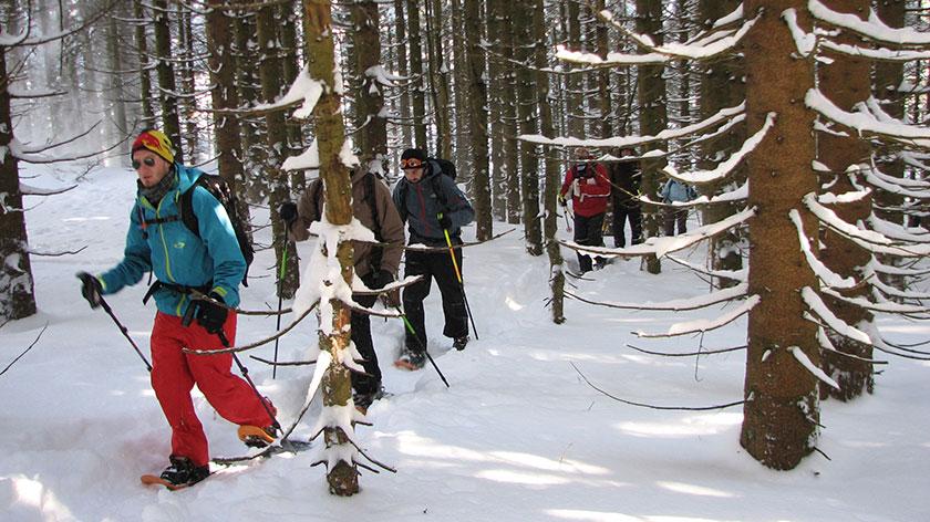 Schneeschuhtour Schliersee - München - 1