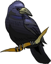 riddle_raven