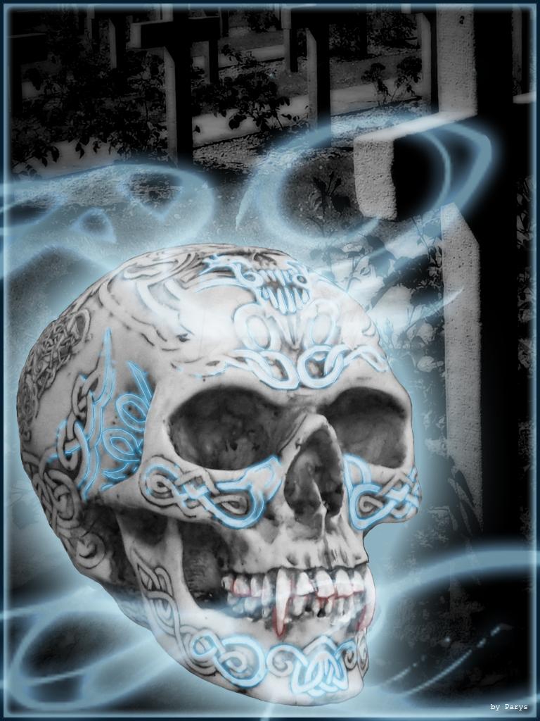 Parys Skull