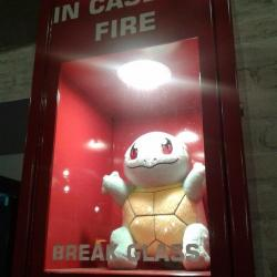 Would you trust this Squirtle?
