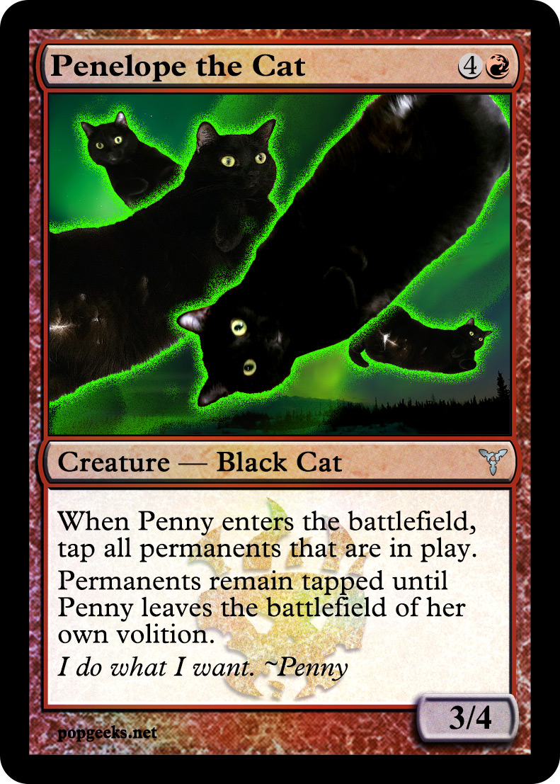 Penelope the Cat