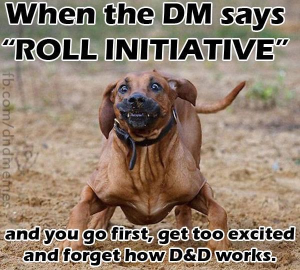 DnD Memes Roll Initiative 9 5k 28 of the best dnd memes