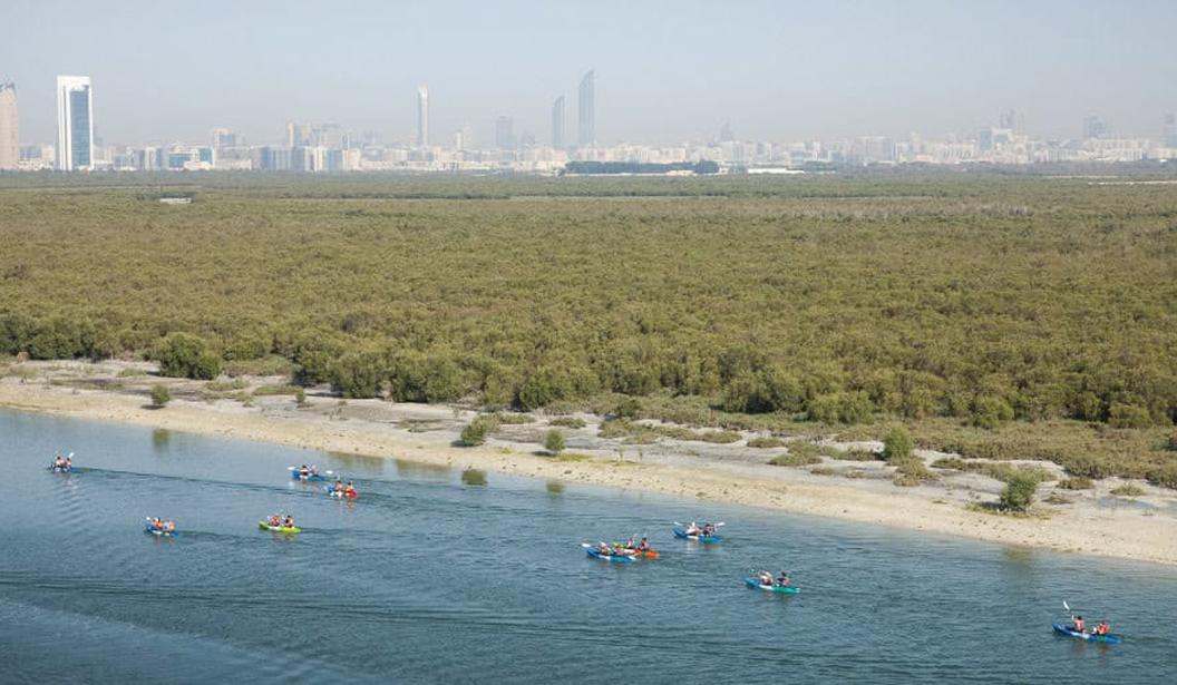 Kayaking The Mangroves @ Abu Dhabi
