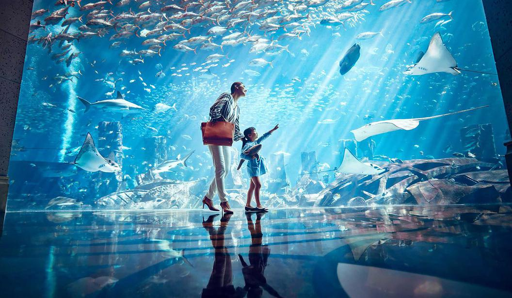 The Lost Chambers Aquarium @ Dubai, Deal, Offer, Coupon, Discount