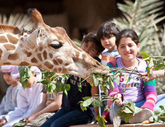Over 20% off Zoo Entry + 3 Activities @ Emirates Park Zoo @ Abu Dhabi