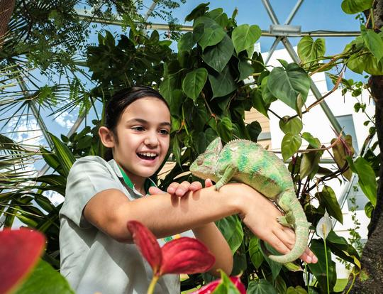 Ultimate Sustainable Summer Camp at The Green Planet @ Dubai