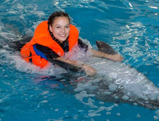 Swim with Dolphins @ Dubai