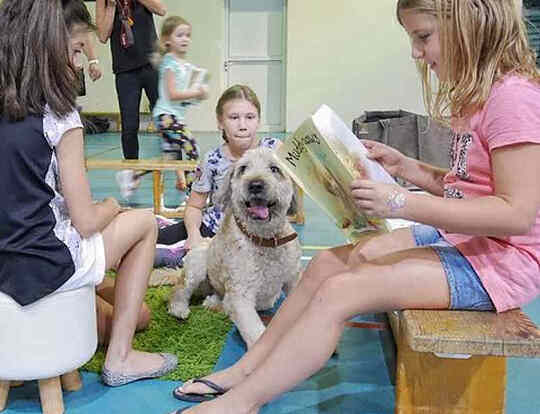 Reading Dogs UAE @ Dubai