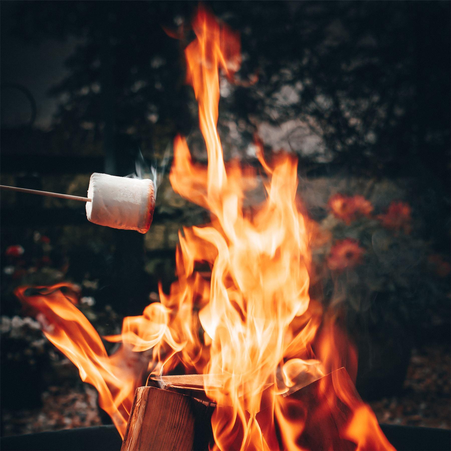 Gusseisen Garten Feuerstelle Mit Tragegriffen   60cm