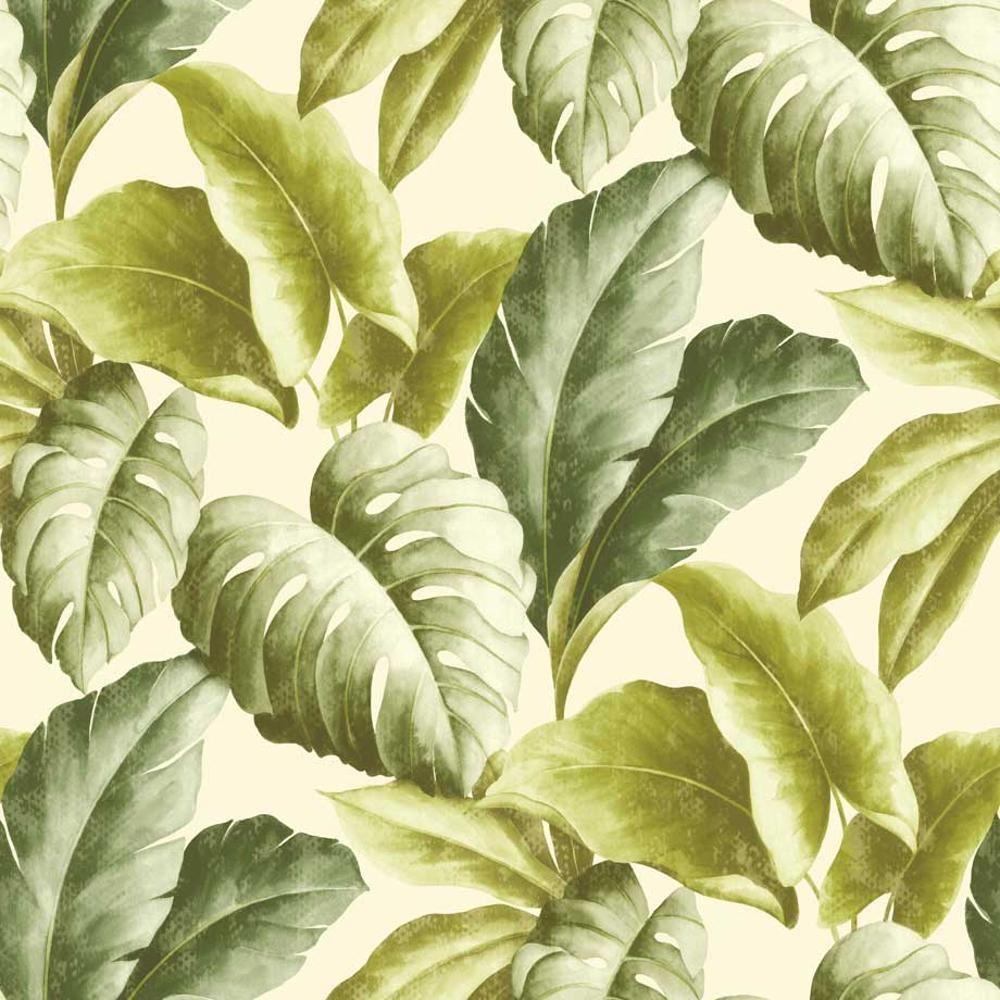 Grandeco Botanique Tropical Feuilles Motif Papier Peint