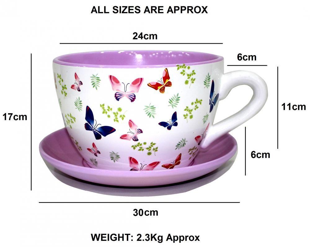 Giant Butterfly Tea Cup And Saucer Planter Jumbo Butterflies Design Plant  Pot