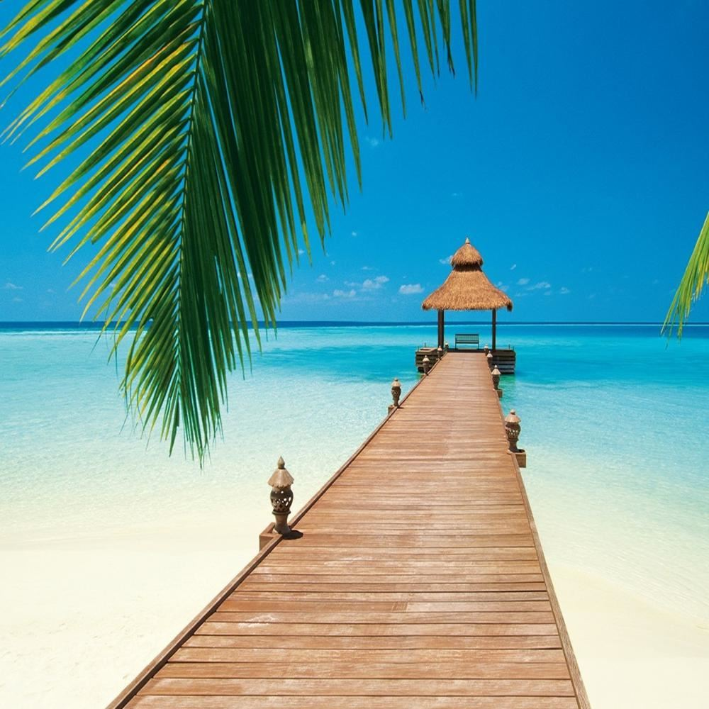 Paradise Beach: W+G Wall Mural Paradise Beach Pier Photo Poster Wallpaper