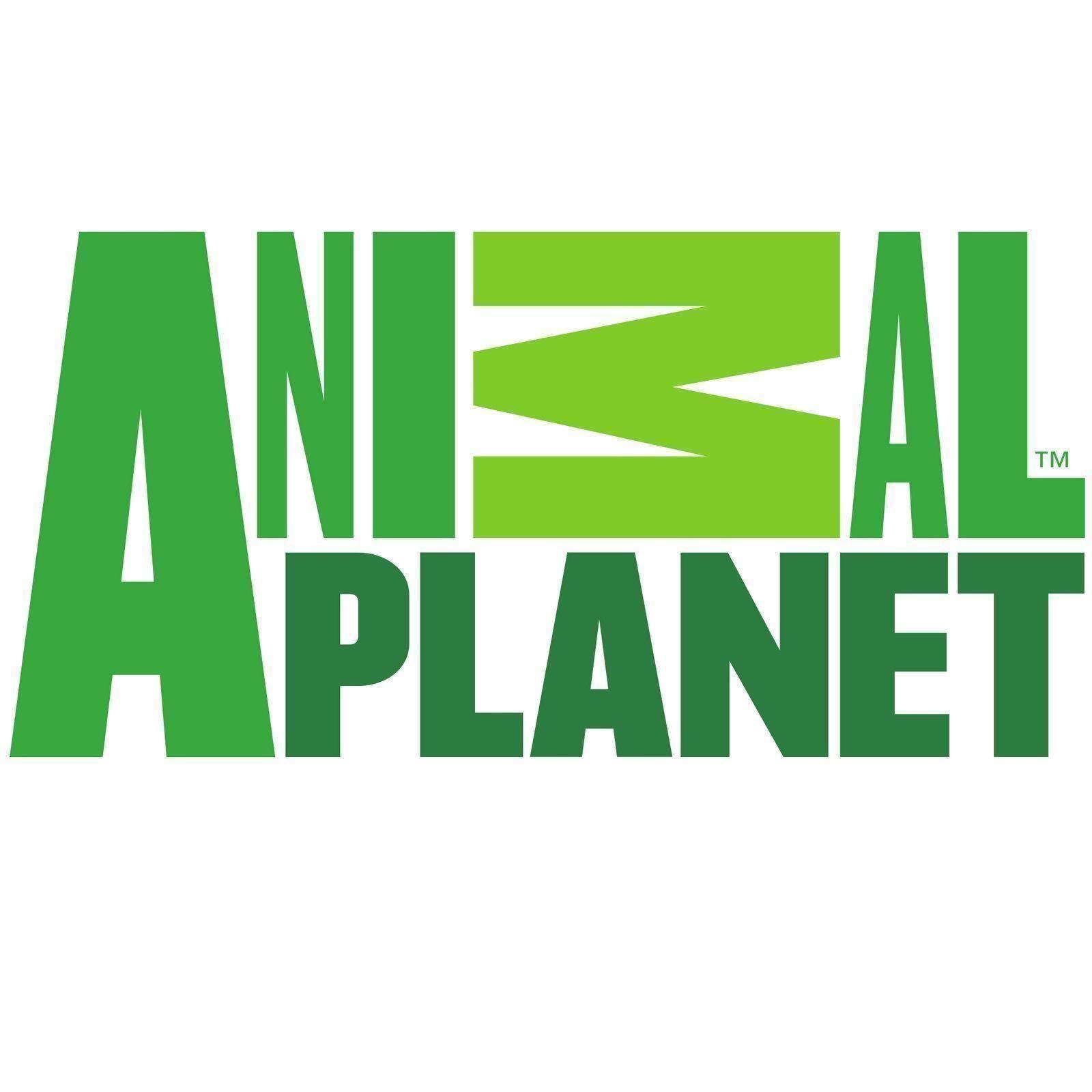 Animal Planet Mojo Deluxe 3 PC assortiti Dinosauri Giocattolo Replica Figure Set 387307