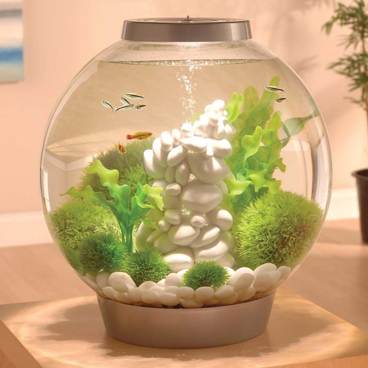 thumbnail 26 - BIORB CLASSIC AQUARIUM ACRYLIC FISH TANK COMPLETE SETUP LED LIGHTING FILTER UNIT