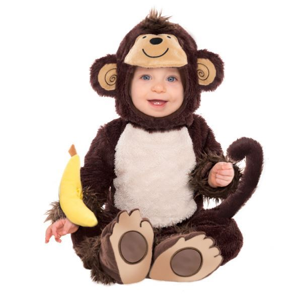 Babies-Mixed-Costume-Fancy-Dress-Book-Week-Character-Toddler-Lot thumbnail 28